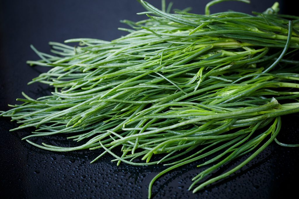 Agretti primaverili